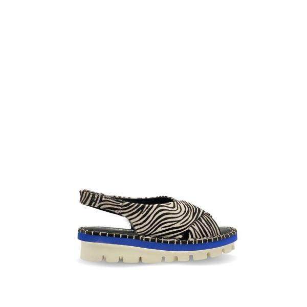 Asami Zebra
